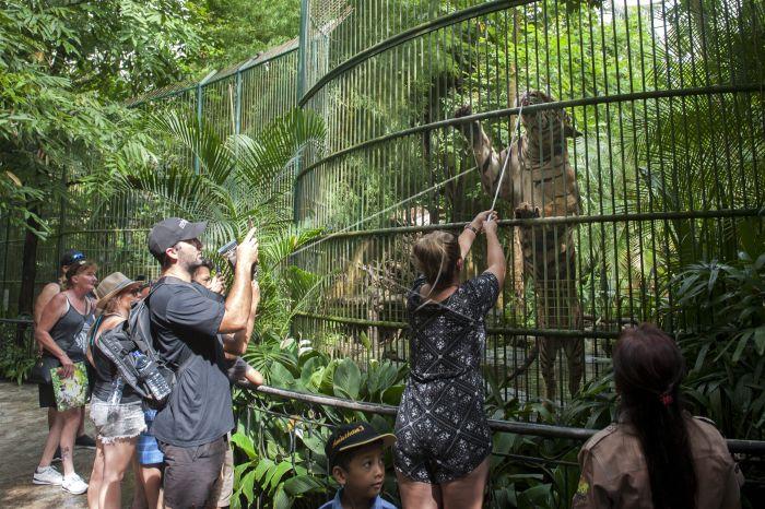 Bali Ramai Jelang Tahun Baru Antara Foto