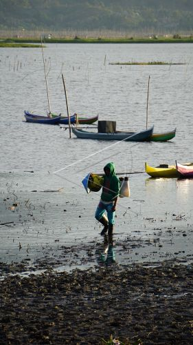 Danau Limboto Surut   ANTARA Foto
