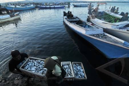 armada nelayan sultra