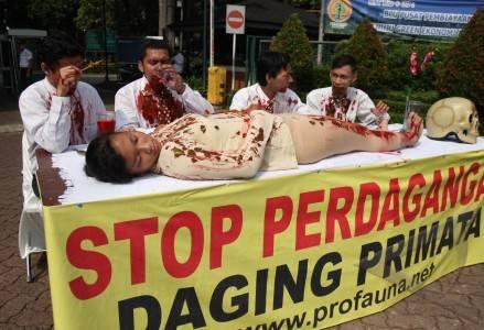 protes perdagangan daging primata