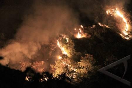 Kebakaran hutan aceh