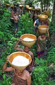 tradisi maulid adat