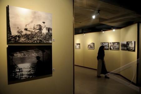 pameran foto borneo