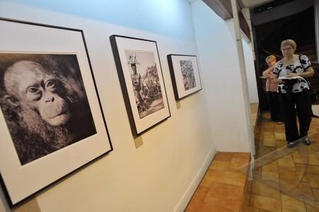 jakarta 27 3 pameran foto borneo pengunjung mengamati foto dokumenter ...