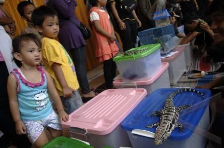 Gerakan-cinta-reptil-12