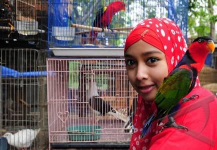 Pasar Burung - ANTARA Foto: Peristiwa - 6/2/2012 13:25:
