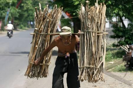 http://v-images2.antarafoto.com/gps/1282831208/penjual-kayu-bakar-08.jpg