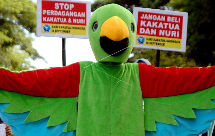 Hari Burung Kakatua Indonesia Antara Foto