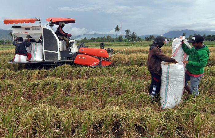Pemanfaatan Teknologi Pertanian Antara Foto