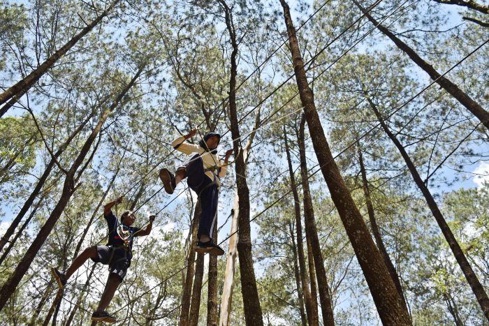 Wisata Alam Hutan Pinus Kopeng Antara Foto
